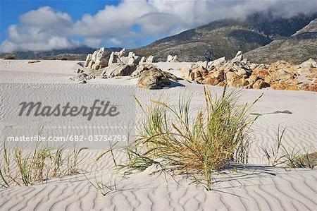 Dunes de sable sur la plage de Silver Sands dans Bay, Western Cape Province, Afrique du sud de Betty
