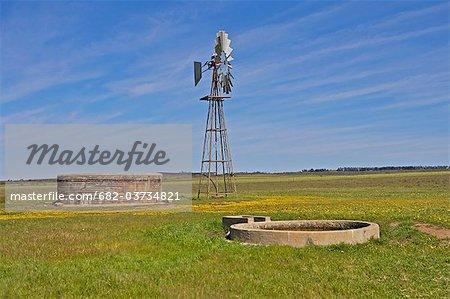 Barrage de moulin à vent et ferme, près de Nieuwoudtville, Province de Northern Cape, en Afrique du Sud