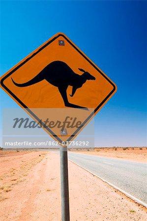 Australie, Northern Territory, Lasseter Highway. Route de kangourou signent une télécommande outback road.