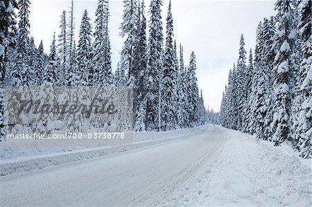Snow Covered Road, Hope, Colombie-Britannique, Canada
