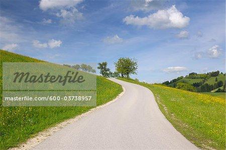 Straße durch Hills, Sonntagberg, Mostviertel, Niederösterreich, Österreich