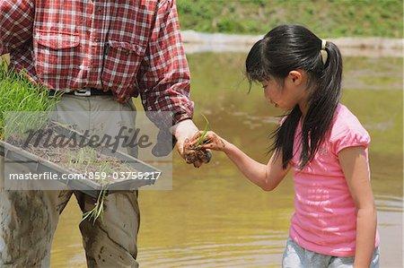 Girl Seeding Plant On a Farm