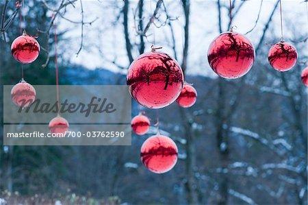 Rote Weihnachten Kugeln hängen am Baum, Salzburg, Österreich