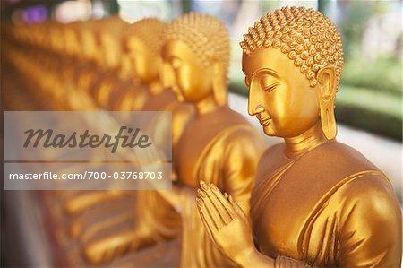 Rangée de Statues de Bouddha d'or de Temple