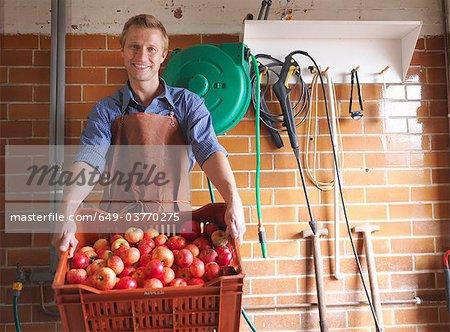 Homme détient un cageot de pommes à la cidrerie