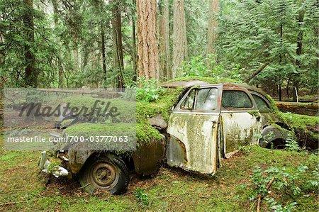 Auto Friedhof, Valdes Island, British Columbia, Kanada