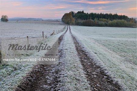 Chemin d'accès, Schotten, Vogelsberg District, Hesse, Allemagne