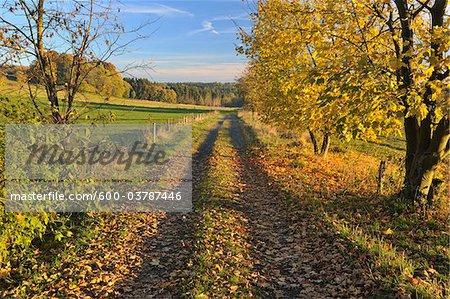 Path, Schotten, Vogelsberg District, Hesse, Germany