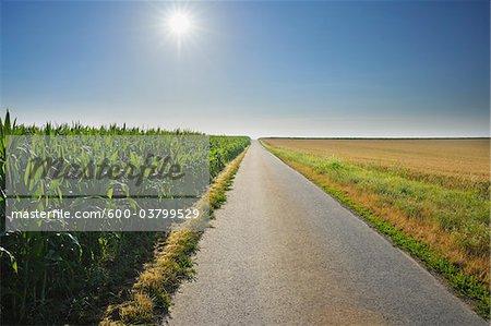 Country Road between Fields, Unterpleichfeld, Franconia, Bavaria, Germany