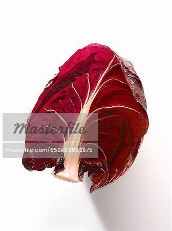 Chicorée rouge de Trévise feuille