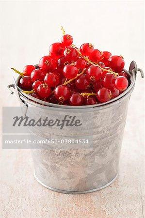 Small metal bucket full of redcurrants