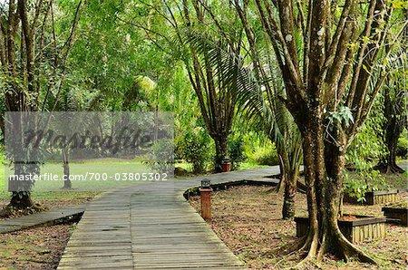 Boardwalk, Sarawak Cultural Village, Santubong, Sarawak, Borneo, Malaysia
