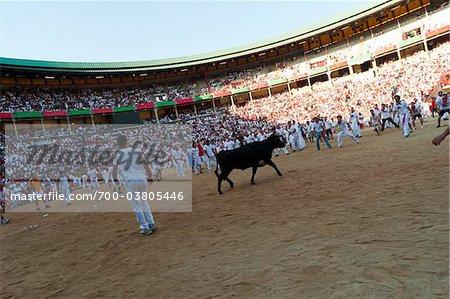 Amateur Stierkampf mit Young Bulls, Fiesta de San Fermin, Pamplona, Navarra, Spanien