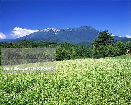 Mt.Mitake, Nagano, Japan