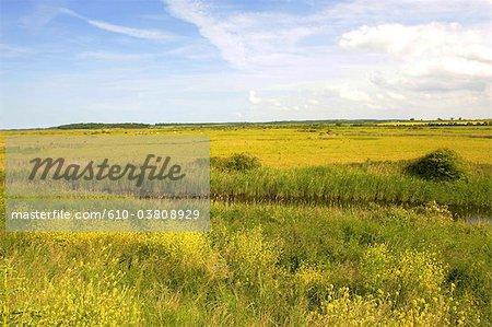 England, Norfolk, Burnham Overy