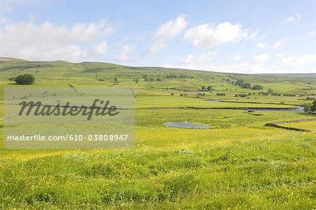 England, Yorkshire Dales, landscape