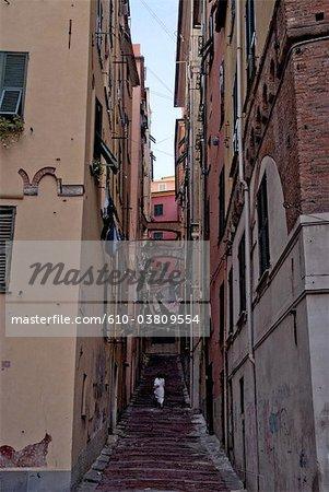 Rue de la Ligurie, Gênes, Italie
