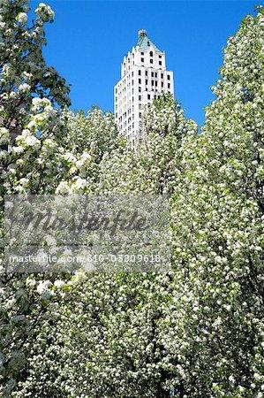 États-Unis, Illinois, Chicago, bâtiment de Pittsfield