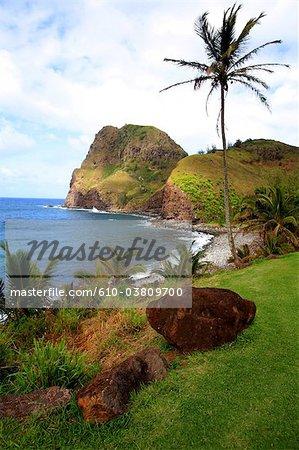 Aux États-Unis, Hawaï, l'île de Maui, Kahakuloa