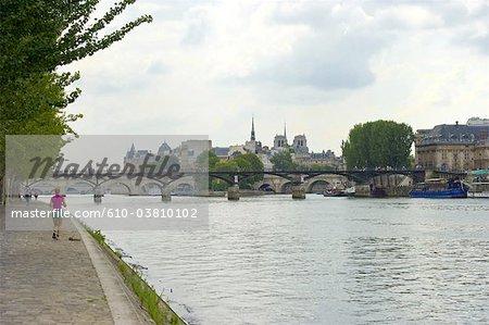 France, Paris (75), Ile de France, pont des arts