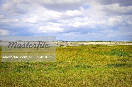 France, Poitou Charentes, baie de Meschers sur Gironde