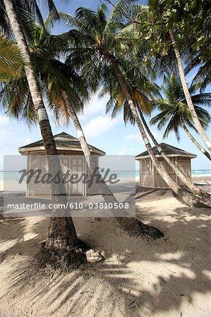 Barbade, plage de Worthing