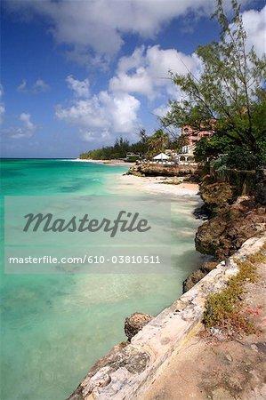 Barbade, Turtle beach