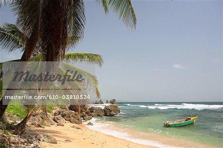 La Barbade, au sud de Bath-Chéba, côte Atlantique