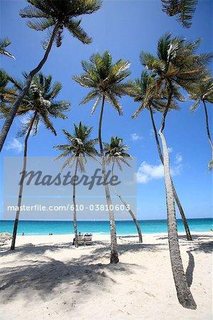 Plage de sable blanc de fond de la baie, la Barbade,