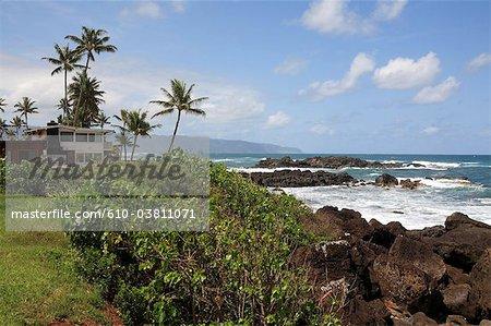 États-Unis, Hawaï, l'île Oahu, côte-nord