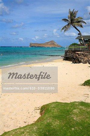 Aux États-Unis, Hawaii, Oahu island, Kailua, maryline island