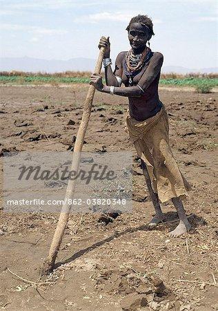 Une vieille femme Dassanetchs prépare ses champs à côté de la rivière Omo avec un bâton de creuser dans l'empressement de planter du sorgho. Cette forme grossière de l'instrument agricole sert en commun dans cette région éloignée de l'Éthiopie.