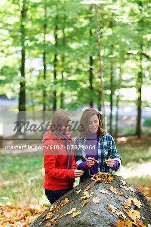 Deux femmes, cueillette de champignons dans la forêt, Suède.