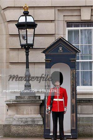 Garde de la Reine à Buckingham Palace, Londres, Angleterre