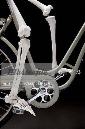 Un squelette sur une bicyclette, partie basse