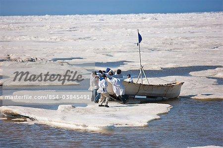 Walfang Besatzung legt ihre Umiaq aus dem Chuchki Meereis am Ende der Frühjahrssaison Walfang in Barrow, Alaska Arktis, Sommer