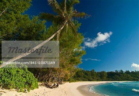 Beach of Anse Cocos, La Digue, Seychelles, Indian Ocean, Africa