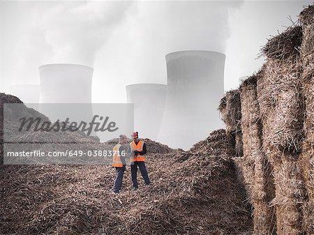 Travailleurs avec éléphant herbe comme biocombustible