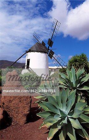 El Molino à Antigua, Fuerteventura, îles Canaries, Espagne