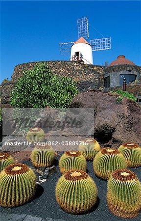 Jardin de Cactus, Lanzarote, Canary Islands, Spain