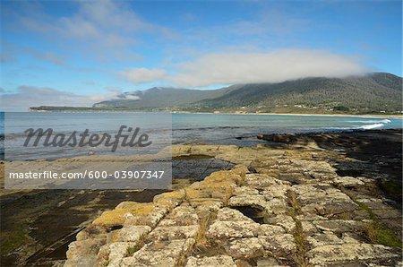 Pavage, pavage, baie des Pirates, péninsule de Tasman, Tasmania, Australie