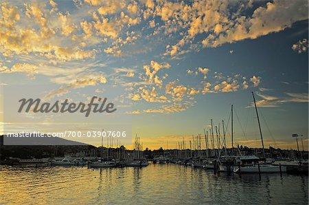 Crépuscule sur la Marina, Sandy Bay, Hobart, Tasmania, Australie