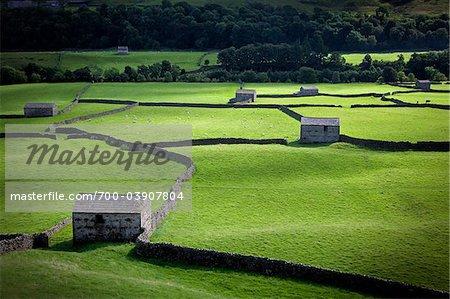 Rural Landscape, Yorkshire Dales, England