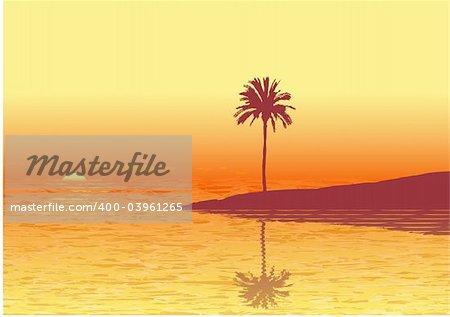 Coucher de soleil rouge sur une plage tropicale. Illustration vectorielle.