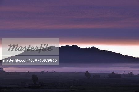 Mountain Range and Foothills at Dawn, Loisachwinkel, Kocheler Moos, Murnau, Upper Bavaria, Bavaria, Germany