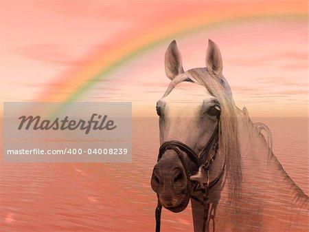 Wonderful horse under a colorful rainbow