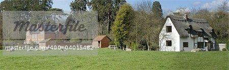 Farmland. a field with sheep and houses warwickshire england uk