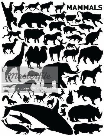 vector set of mammals