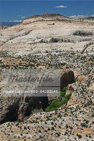 Grand escalier Escalante National Monument, Utah, USA