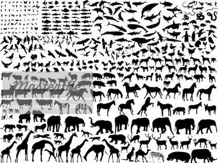 grande collection de silhouette de différents animaux - vecteur